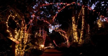 Garden-of-Lights-Botanic-Garden
