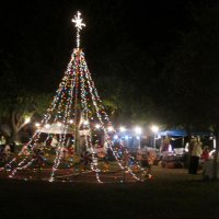 bates nut farm christmas