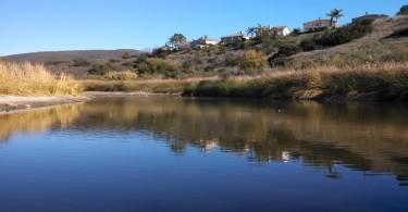 SFH-pond