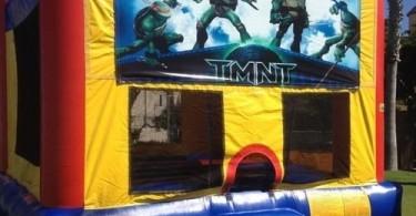 Teenage+Mutant+Ninja+Turtles+Module