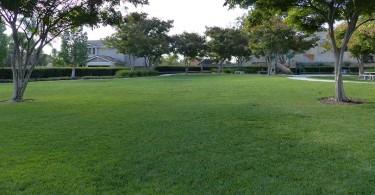 Amigo-Park-flat-grass