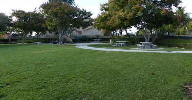 Amigo-Park-grass-park