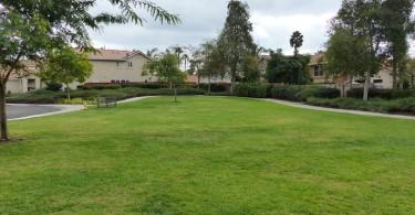 Creek-View-Park-Grass-Area