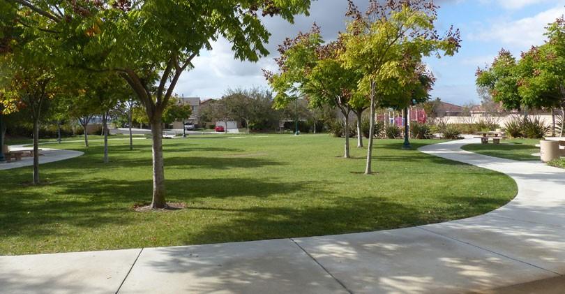 Foothills-Park-Grass-Area