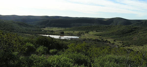 Goodan-Ranch-Sycamore-Canyon-Preserve