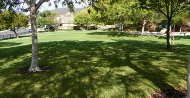 Santa-Fe-Hills-Open-Grass
