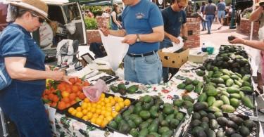 Avocado-sales
