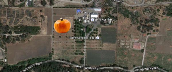 bates-nut-farm-pumpkin-patch