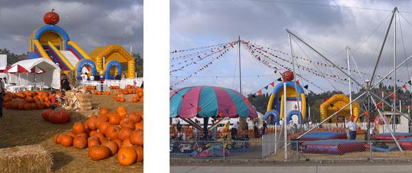 stu-miller-san-marcos-pumpkin-patch