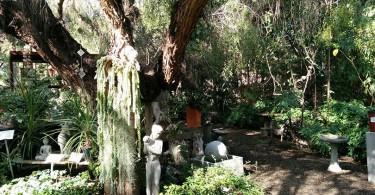 buena-creek-gardens